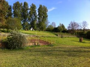 Labyrinth, Holycombe