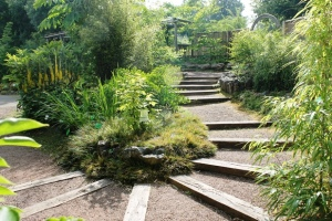 Chinese herb garden at Bristol Botanical gardens
