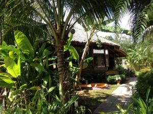 Island Yoga studio